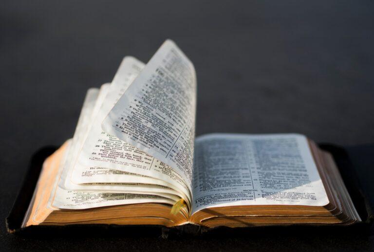 que version biblica es mejor