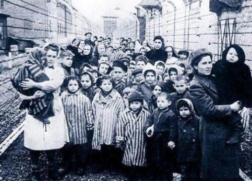 testigos de jehová en nazismo